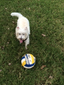 Yuki and her soccer ball