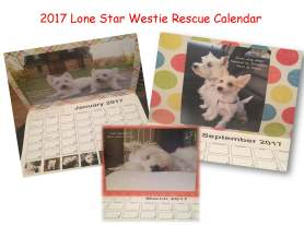 calendar-presentation1